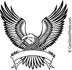 독수리, 상징