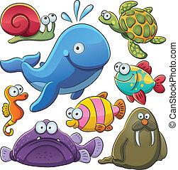 동물, 바다, 수집