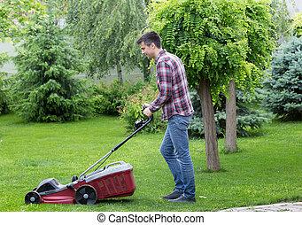 뒤뜰, 잔디, 정원사, 깎는 것