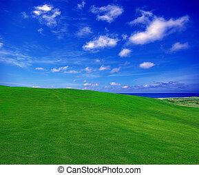 들판, 녹색