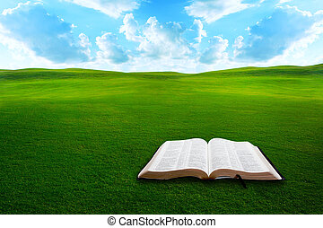 들판, 성경, 풀이 무성한