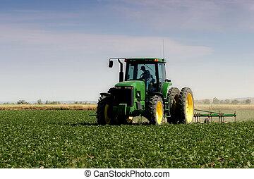들판, 쟁기로 갈는 것, 농부