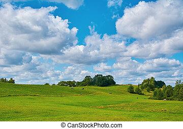 땅, 목장