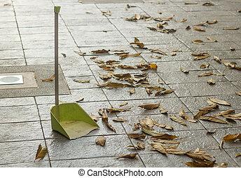 말리는, 잎, 긁어 모으는 것, 바닥, 쓰레받기, leaf., housework., 가을, 가을
