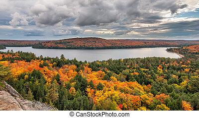 멀리 바라보는 것, 호수, 나무, 가을, 작고 보기 어리석은 사람, 보이는 상태
