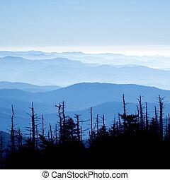 멋진, 연기가 자욱한, 국립 공원, 산