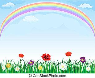 목초지, 위의, 무지개, 꽃, 풀