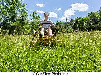 목초지, lawnmower, 회전, 영, 상급생