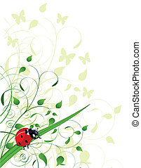 무당벌레, 봄, 배경