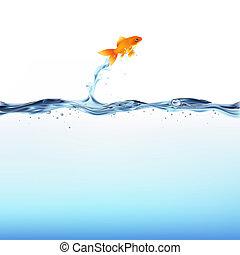 물, 금붕어