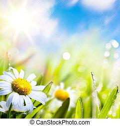 물, 떼어내다, 하늘, 배경, 예술, 여름, 잔디 태양, 꽃, 은 떨어진다