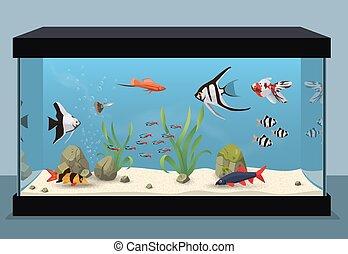 바다에서는 서투른, 수족관, 삽화