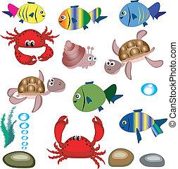 바다, animals.