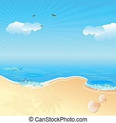 바닷가, 바다