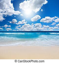 바닷가, 조경술을 써서 녹화하다, 화려한