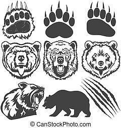 발자국, 집게발, 은 긁는다, 벡터, 곰