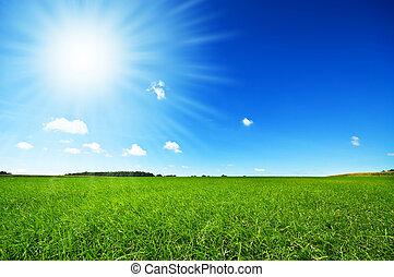 밝은 푸른색, 신선한, 하늘, 풀, 녹색