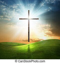 배경., 기독교도, 십자가, 풀이 무성한