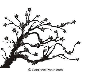 벚꽃, 실루엣, 나무