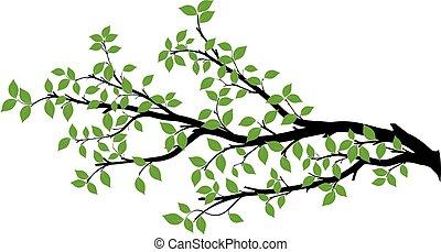 벡터, 나무, 실루엣, 가지, 도표