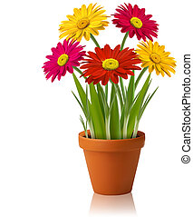 벡터, 봄, 신선한 꽃, 색