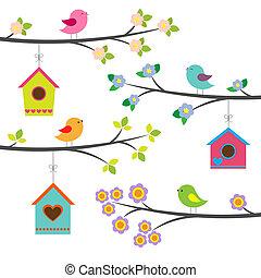 벡터, 세트, 새, birdhouses.