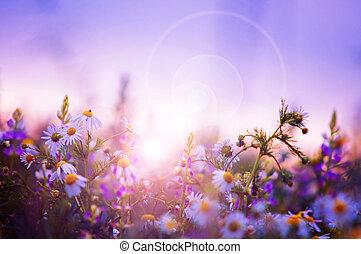 봄의 꽃, 들판