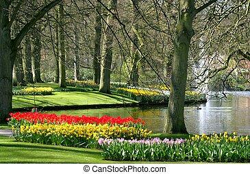 봄, 공원, 시간
