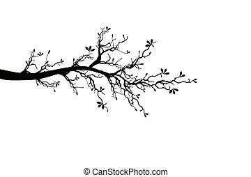 봄, 나무 가지