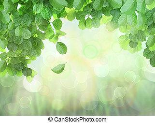 봄, 잎, bokeh, 효과, 배경