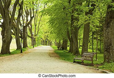 봄, park 긴 의자