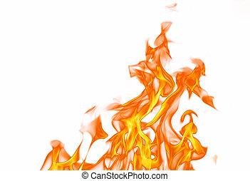 불, 정열