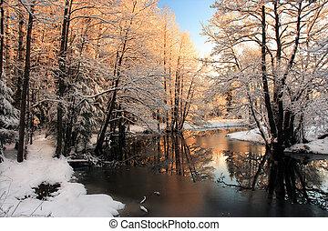 빛, 강, 겨울, 해돋이