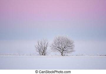 빛, 심홍색