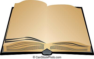 사본, 책, 개방 장소