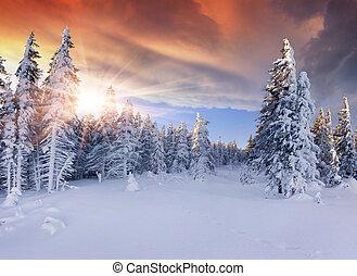 산., 극적인, 아름다운, 해돋이, 하늘, 빨강, 겨울