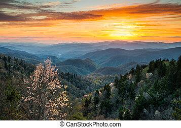 산, 멋진, 북쪽, cherokee, 연기가 자욱한, scen, 공원, 한 나라를 상징하는, 캐롤라이나