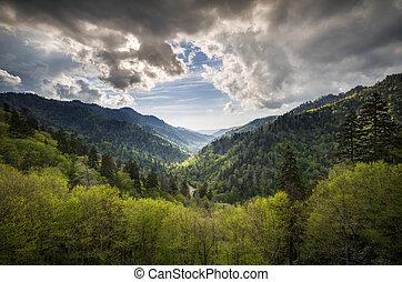 산, 멋진, mortons, 은 녹색이 된다, 무대의, 연기가 자욱한, 너그러이 봐 주다, 공원, gatlinburg, tn, 극적인, 봄, 한 나라를 상징하는, 조경술을 써서 녹화하다, 하늘