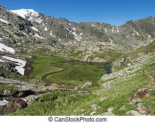산, 아름다운, 눈, wetland, 지나치게 수식적인, 목초지, 풀, 모자를 씌우는, 오스트리아, 하이킹, 여름, peaks., stubai, 보이는 상태, 시내, 은 불렀다, paradies, 알프스 산맥, 활강의, 봄, 정상, 녹색, 티롤, 길게 나부끼다