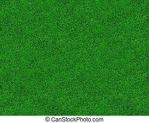 상세한 묘사, 봄, 심상, 녹색, 신선한, 풀