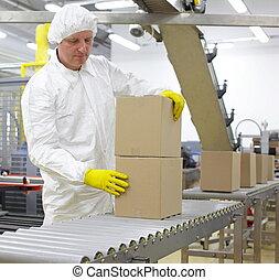 상자, 생산 라인, 매뉴얼, 다룸, 노동자