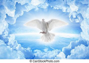 상징, 행성, 사랑, 비둘기, 이상, 백색, 은 날n다, 평화, 지구