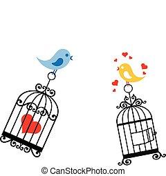 새장, 사랑 새