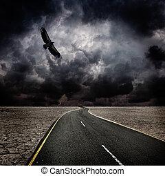 새, 폭풍우, 사막, 길