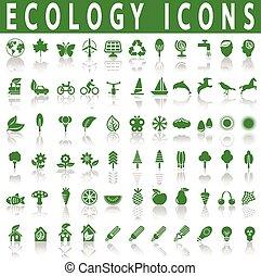 생태학, 아이콘