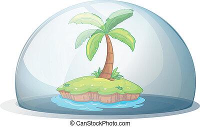 섬, 코코넛 나무