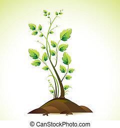 성장하는, 나무