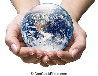 세계, 생태학