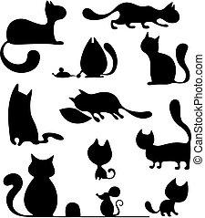 세트, 고양이