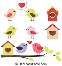 세트, 사랑 새